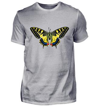 Butterfly   Gift idea