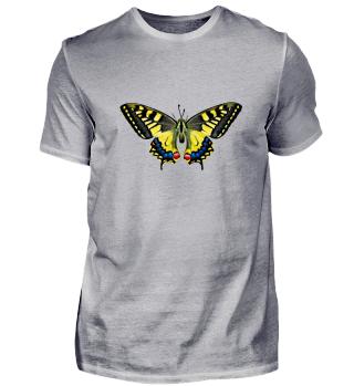 Schmetterling | Geschenkidee