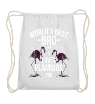 World's Best Bro & Loves Flamingos