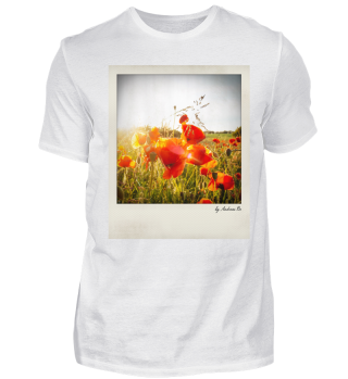 Mohnblumen | Poppies