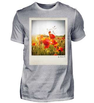 Mohnblumen | Poppies