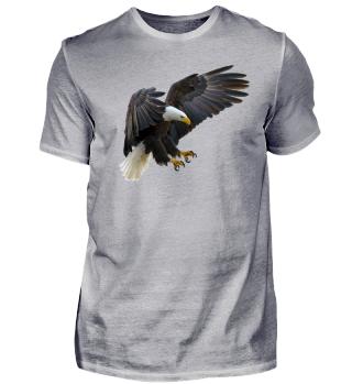 Anflug des Weißkopfseeadlers
