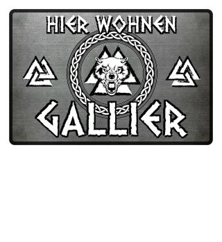 HIER WOHNEN GALLIER!