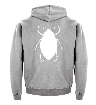 ☛ Käfer · Beetle