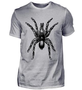 Spider   Gift idea