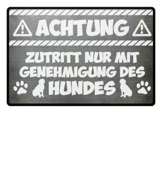 ...Genehmigung des Hundes