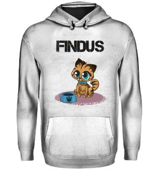 Katze Findus