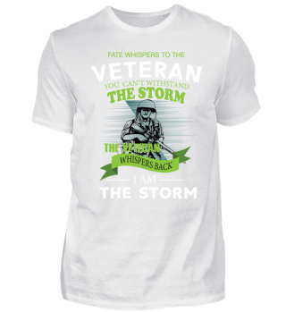 Veterans are the storm! soldier army war