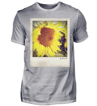 Sonnenblume | Sunflower