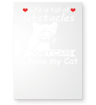 Life is full of obstacles i don't care