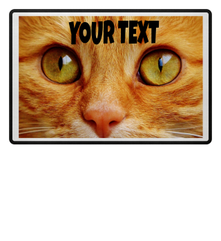 TEXT NAME on Cat Picture Katze Foto