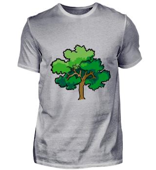 Baum oak baum ast natur