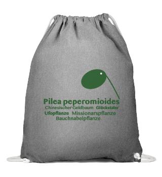 ***Pilea peperomioides Tasche***