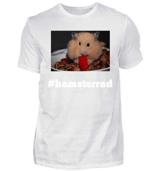 Hamster Motiv - Hamsterrad