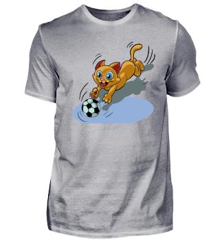 Fußball Katze
