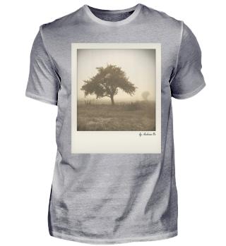 Baum im Nebel | Tree in the fog