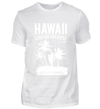 ☛ HAWAII #1.3