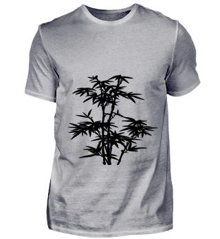 Bambus Natur Pflanze Geschenk
