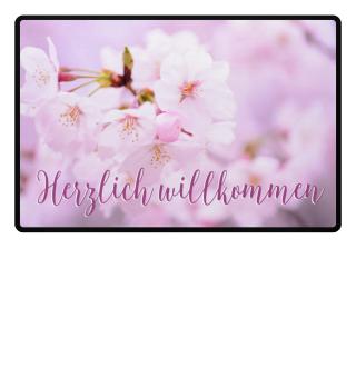 Rosa Kirschblüten - willkommen