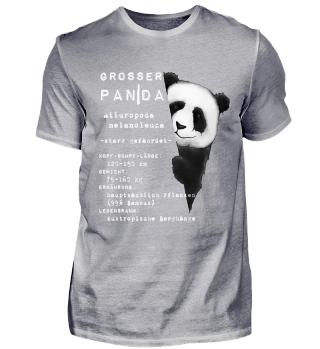 Großer Panda Bär Fakten Wissen Geschenk