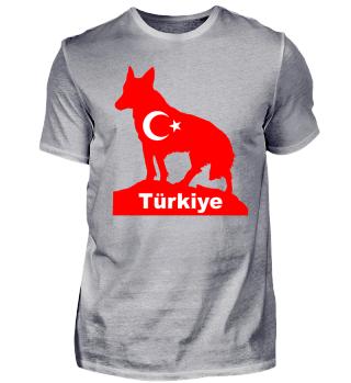Wolf Türkei