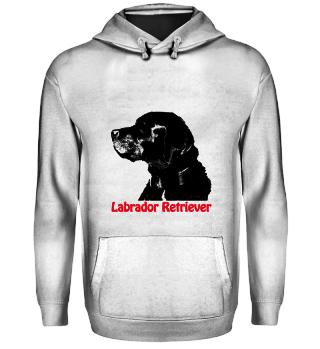Rasseportrait Labrador Retriever