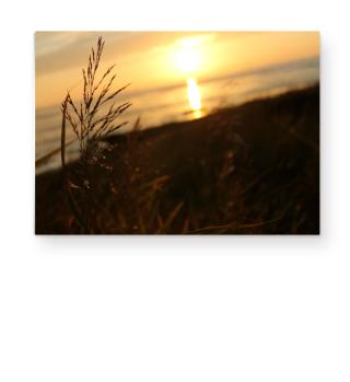 Seaside Photograph