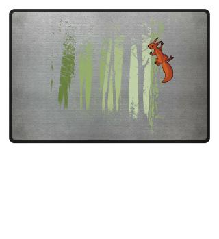 Eichhörnchen im Wald   Squirrel Forest
