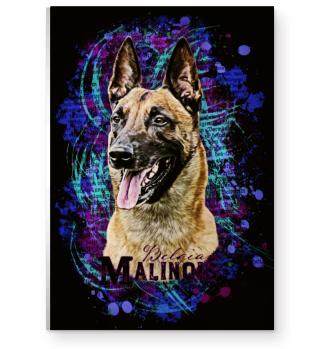 Malinois Poster