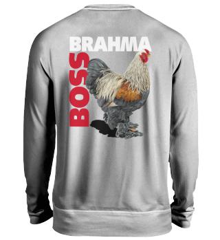 BSO Brahma Boss Backside