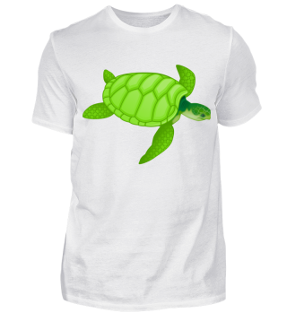 *Limitiert* Schildkröte