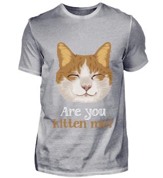 D007-0049B Are you kitten me cat / Katze