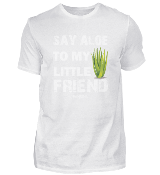 Say Aloe Vera plant garden flower friend