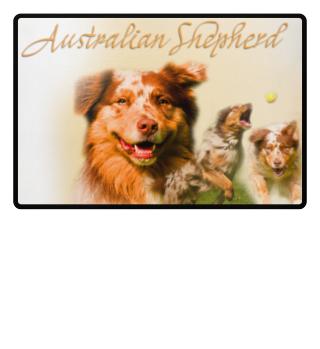 Australien Shepherd-Portrait Fussmatte