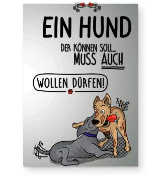 Ein Hund der...Interaktion, Poster