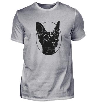 Gothic Katzen Pentagramm Satan lustiges