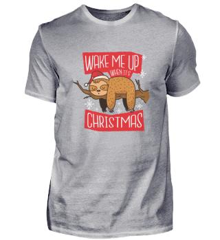 Faultier schläft auf Ast bis Weihnachten