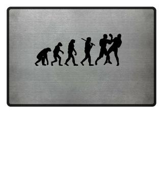 Boxer Evolution