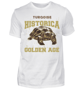 74 turtle2 age