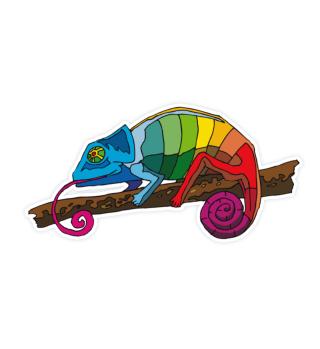 gecko like a rainbow amphibian nature