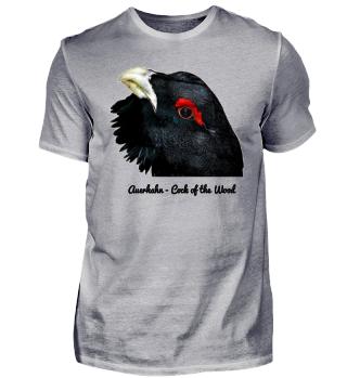 Kollektion Auerhahn Cock of the Wood grouse Waldtier Wildvogel