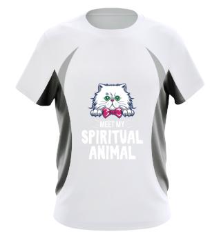 Meet my spiritual Animal Cat