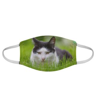 Gesichtsmaske mit Katzenmotiv 20.32