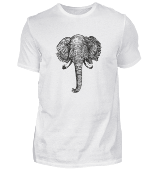 Elefant - Herren