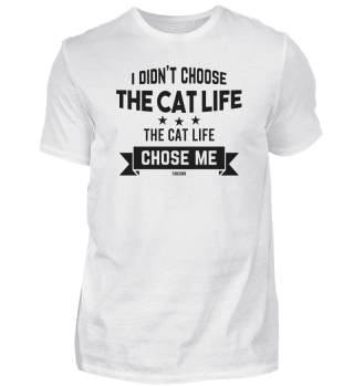 Cat mummy cat Papa pet cat