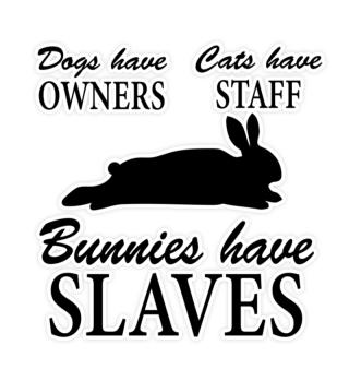 Bunnies have Slaves Kaninchen - Sticker