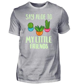 Succulent Plant Gift Cactus Garden Pot