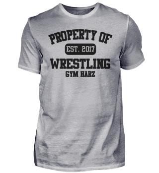 Property Wrestling Gym Harz