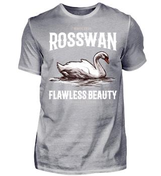 62 swan beauty