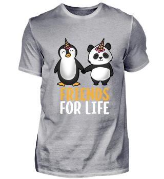 Pinguin & Panda Freunde friends Geschenk
